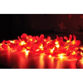 Red Frangipani lights
