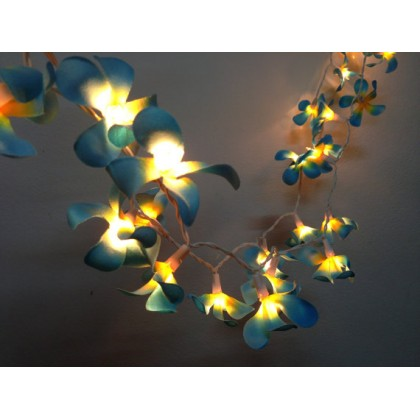 Blue and Yellow Frangipani lights