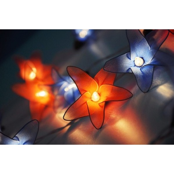 Red Blue Flower String lights